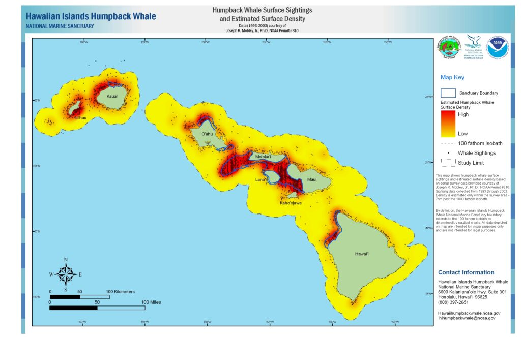 Humpback Whale Surface Sightings and Density Map